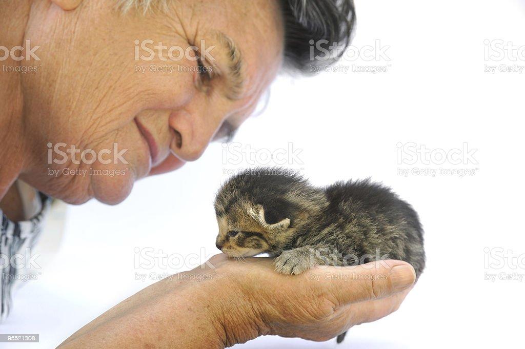 Senior woman holding little kitten royalty-free stock photo