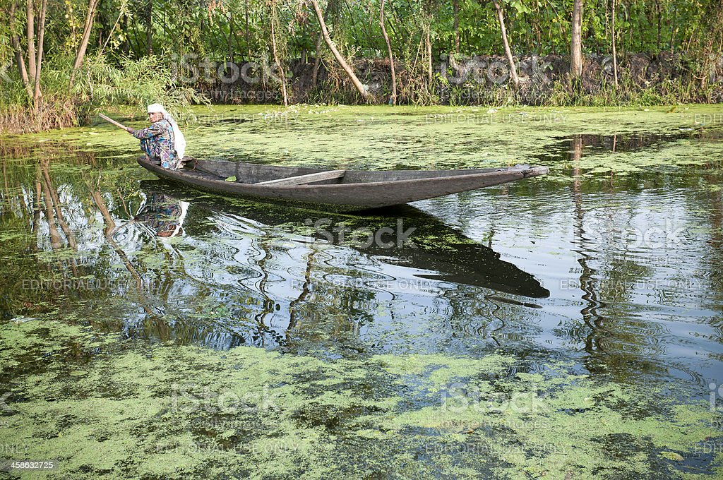 Senior Woman in Boat Lake Dal India royalty-free stock photo