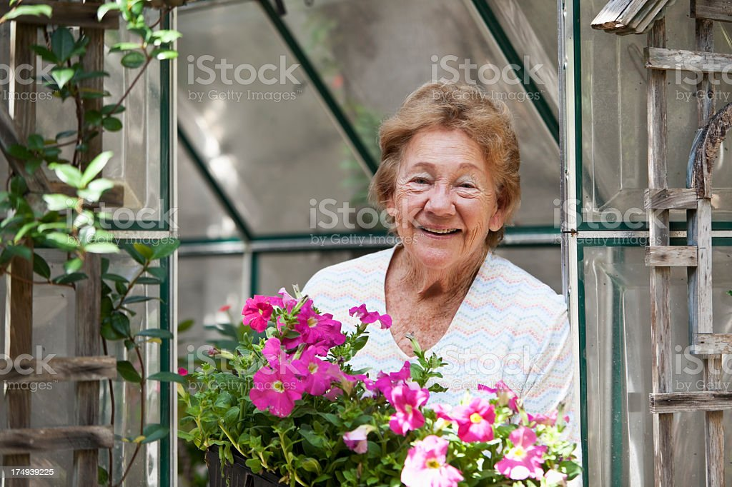 Senior woman in greenhouse royalty-free stock photo
