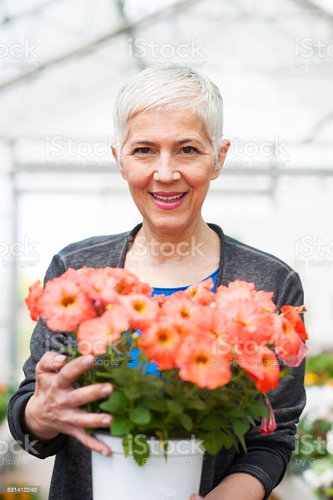 Senior woman looking for flowers at garden center stock photo