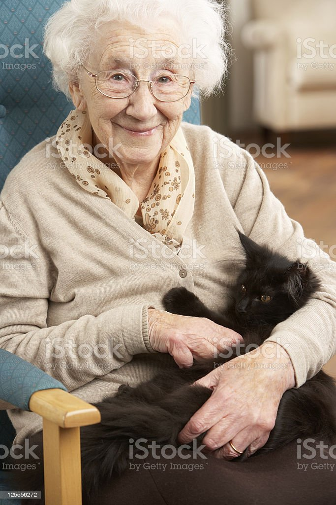 Senior Woman Relaxing In Chair At Home With Pet Cat stock photo