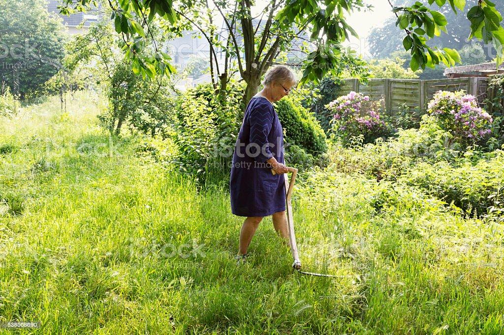 senior woman scything meadow in garden stock photo