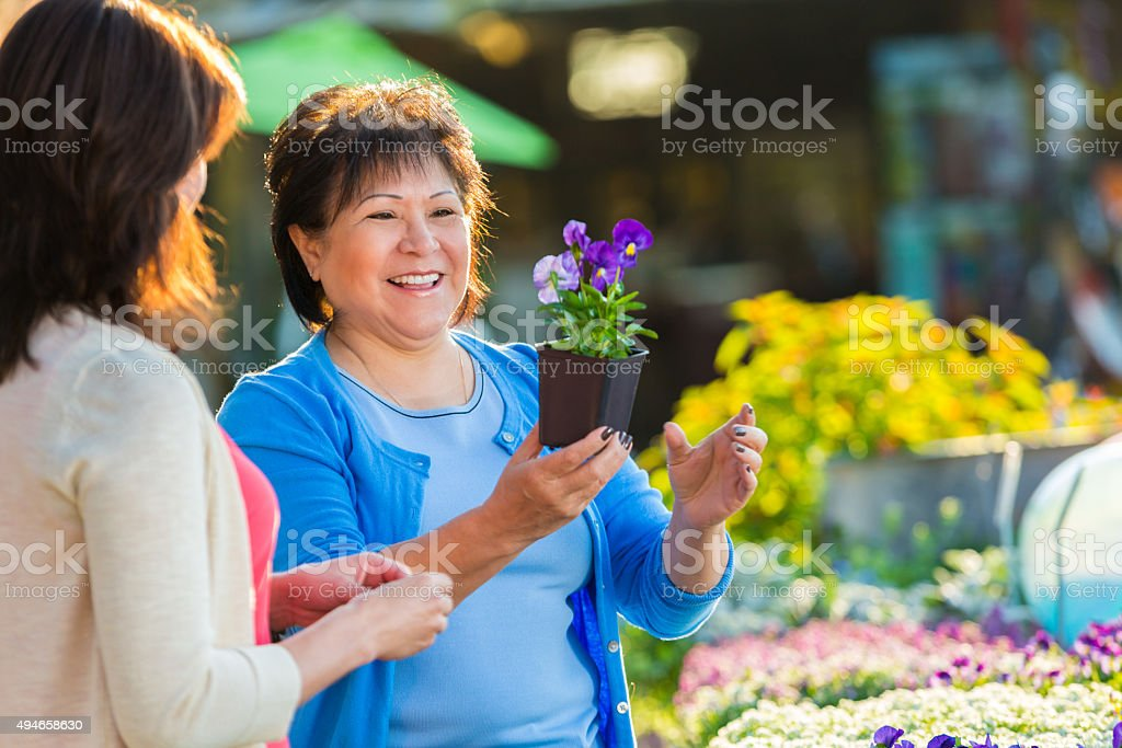 Senior woman shopping for potted plants and flowers stock photo
