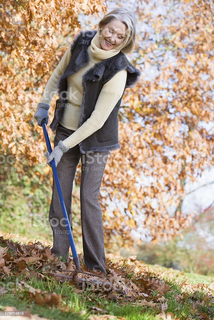 Senior woman tidying autumn leaves royalty-free stock photo