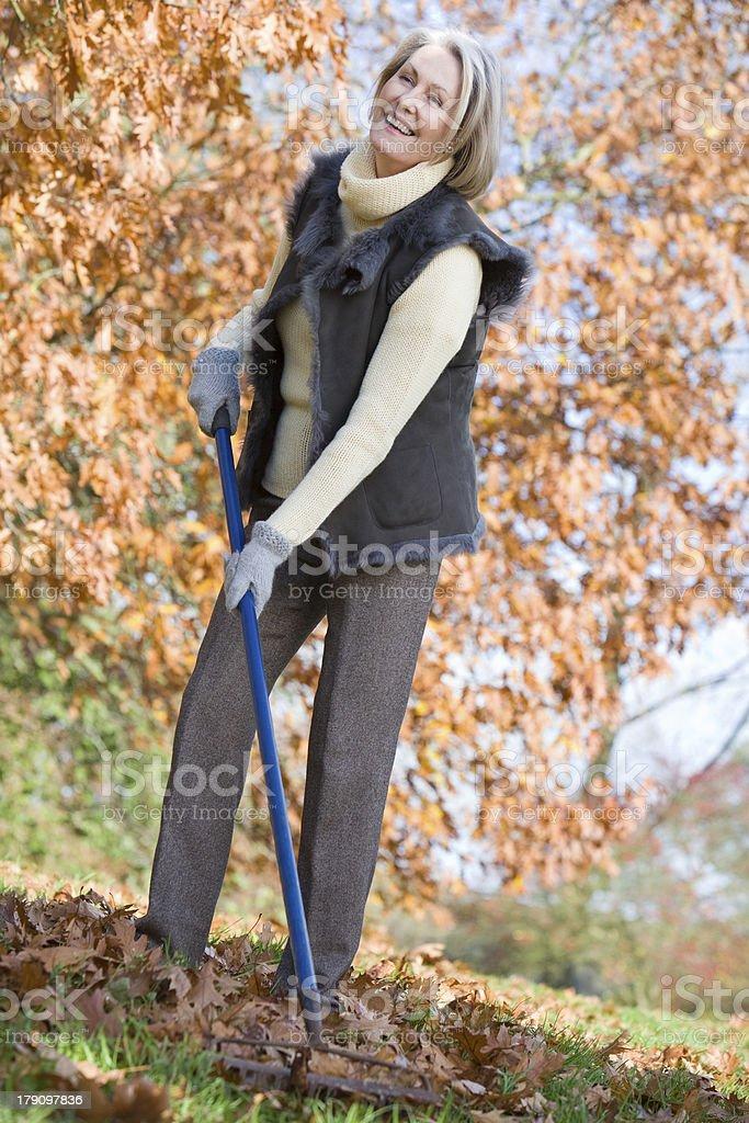 Senior woman tidying autumn leaves royalty-free stock photo