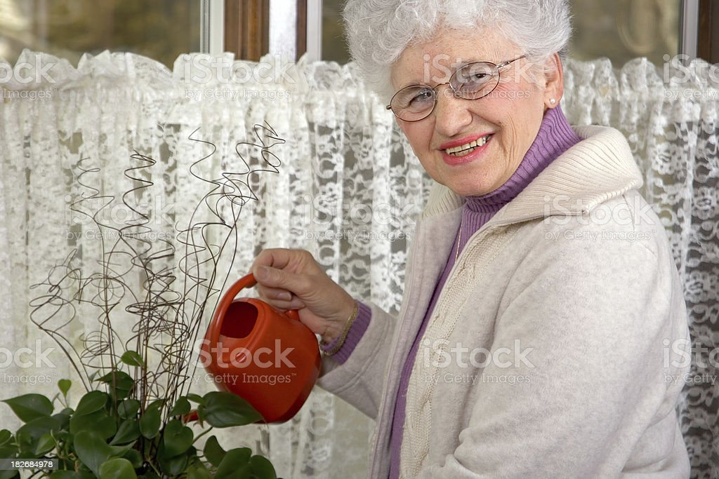 Senior Woman Watering the Plants royalty-free stock photo