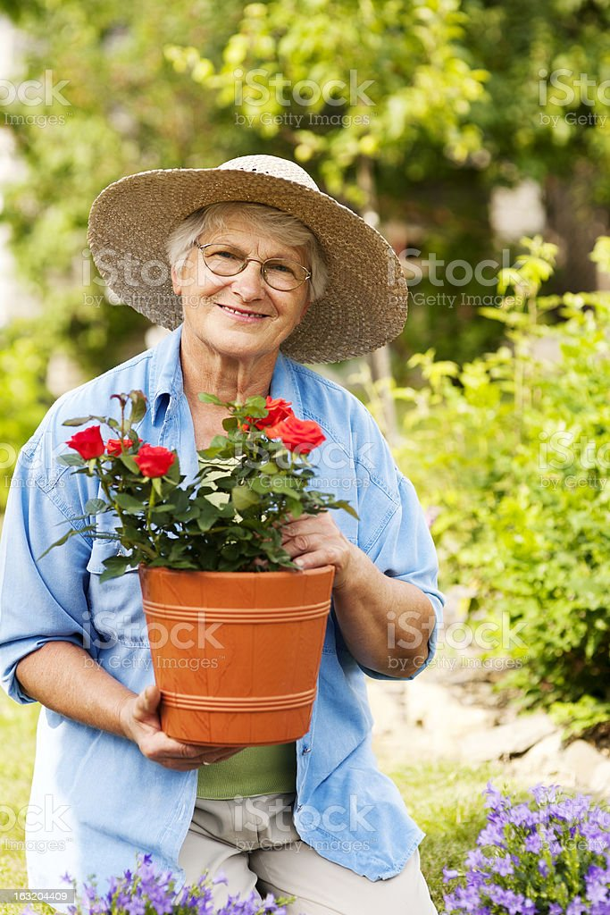 Senior woman with flowers in garden royalty-free stock photo
