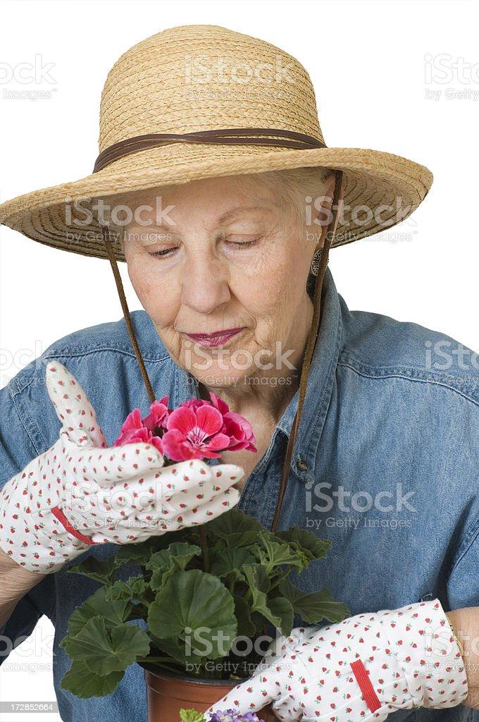 Senior Woman with Geranium stock photo