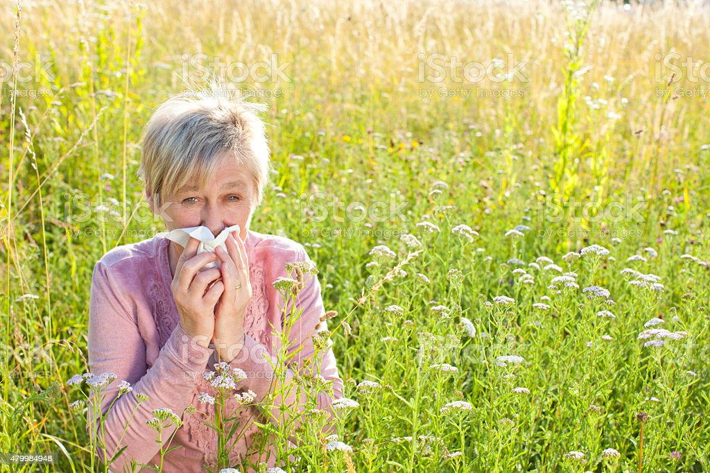Senior woman with handkerchief in the grass stock photo