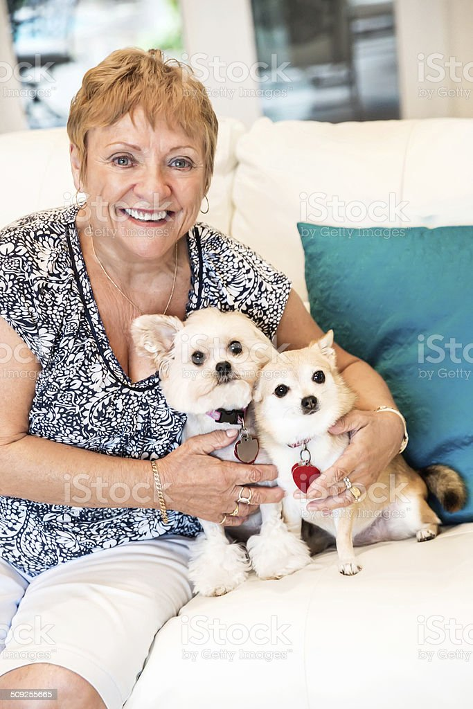 Senior woman with two adorable dogs royalty-free stock photo