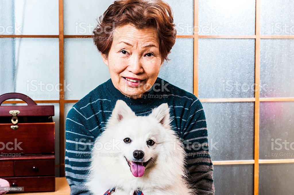 Senior women have a dog stock photo