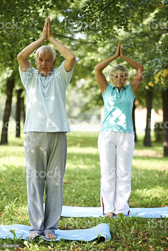 senior yogis royalty-free stock photo