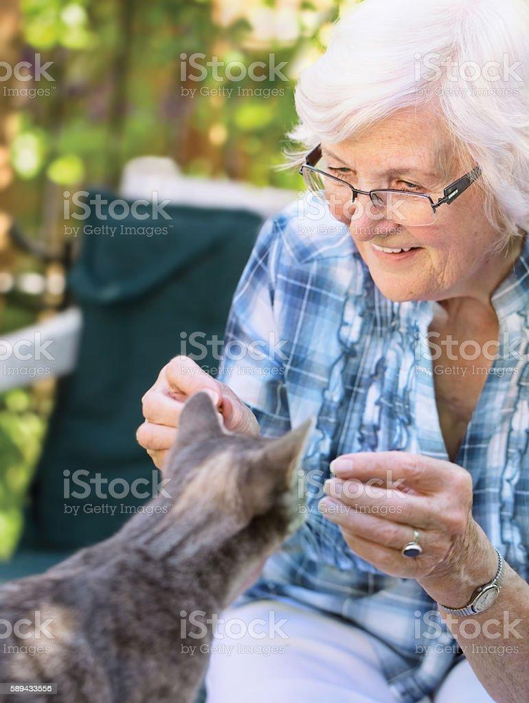 Seniorin und Katze stock photo