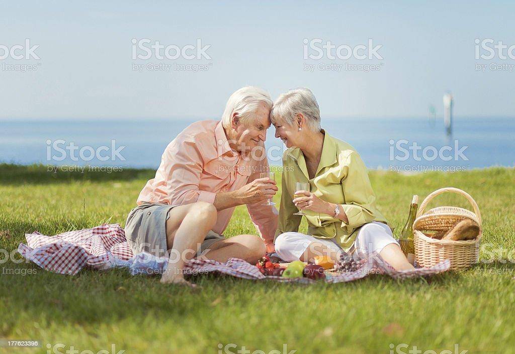 seniors having a picnic royalty-free stock photo