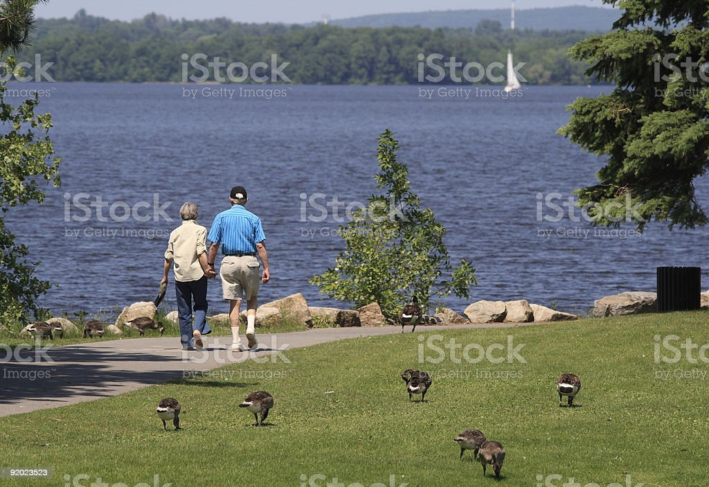 Seniors Holding Hands royalty-free stock photo