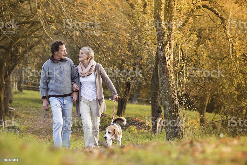 Seniors with dog stock photo
