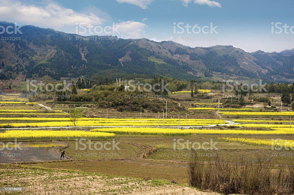 sense of countryside stock photo