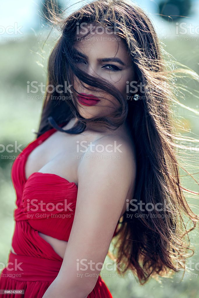 Sensual Brunette Woman with Red Dress on the Wind stock photo