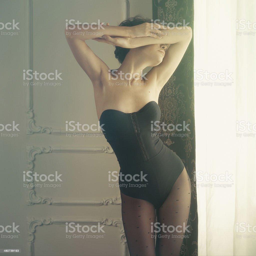 Sensual lady in classical interior stock photo