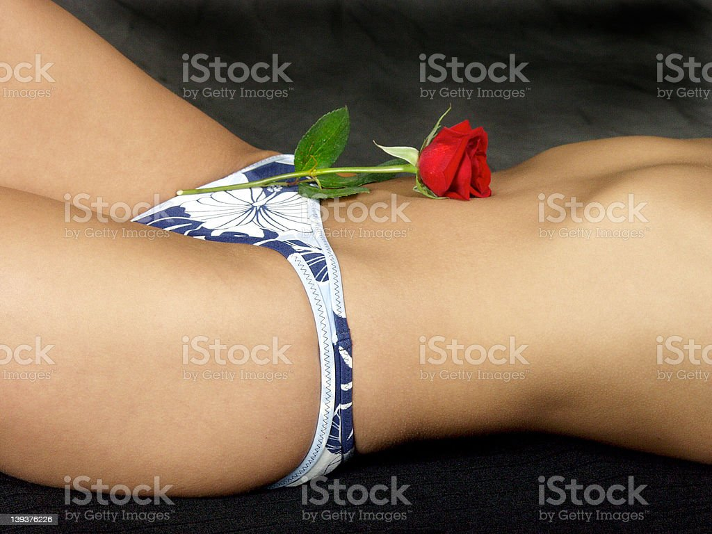 Sensual Rose royalty-free stock photo