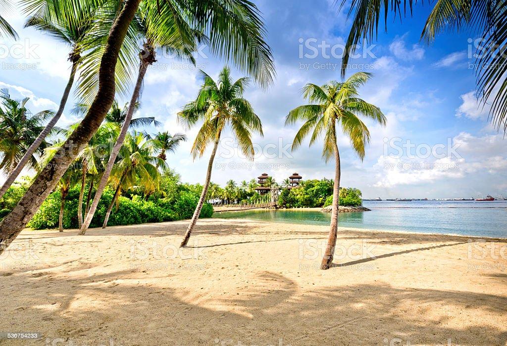 Sentosa Island Beach, Singapore stock photo