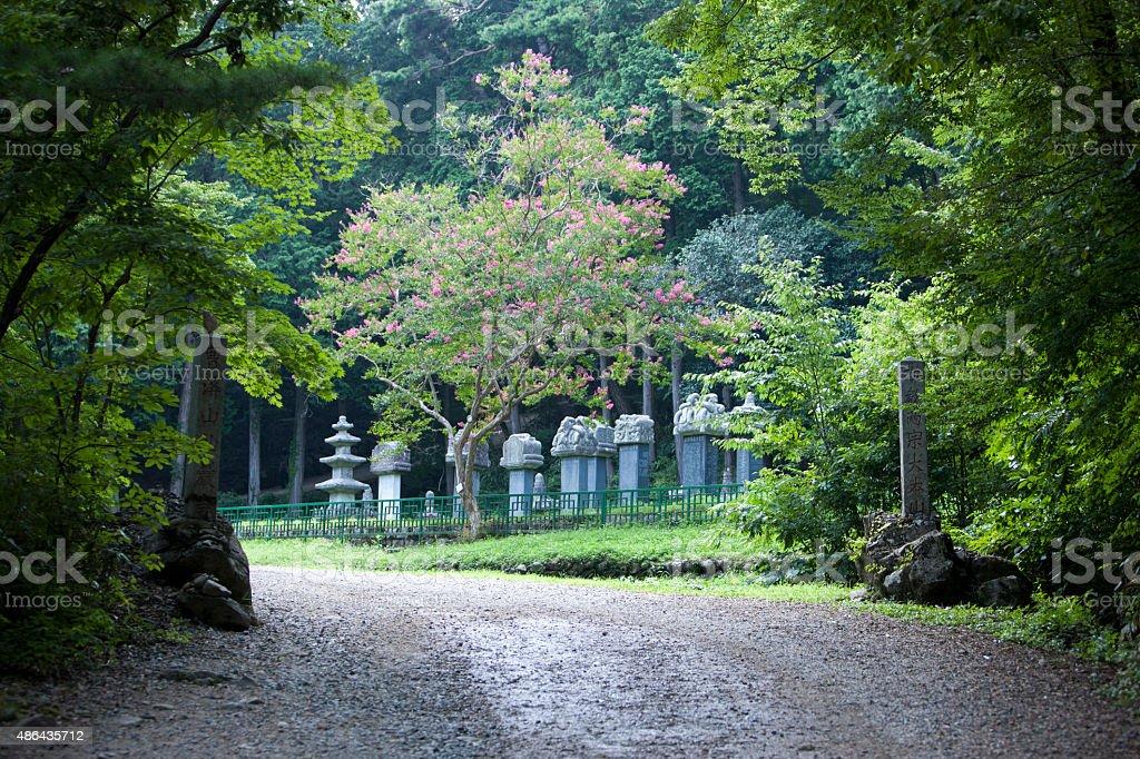 seonamsa temple, way stock photo