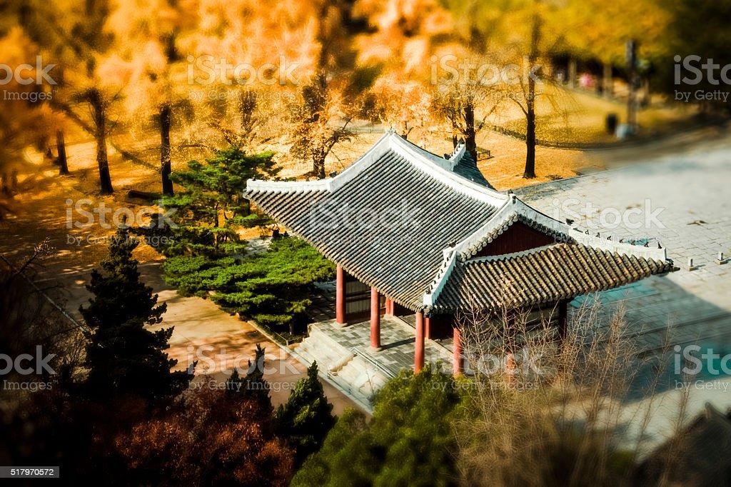Seoul in Fall stock photo