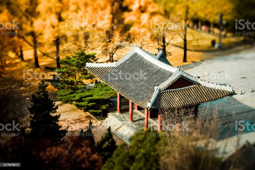 Seoul in Fall stock photo