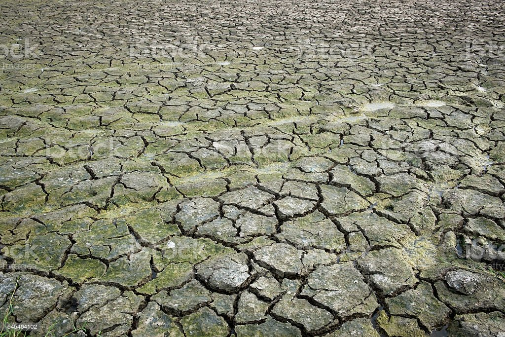 Separate soil or parched ground or cracked ground or desiccated stock photo