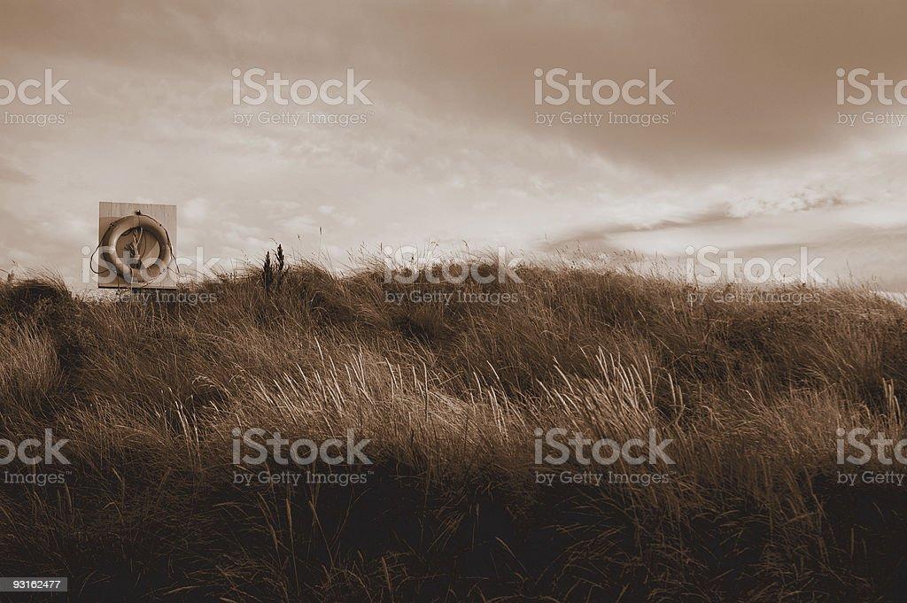 Sepia dunes royalty-free stock photo