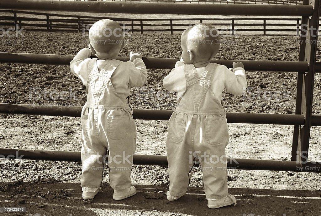 sepia farm twins royalty-free stock photo