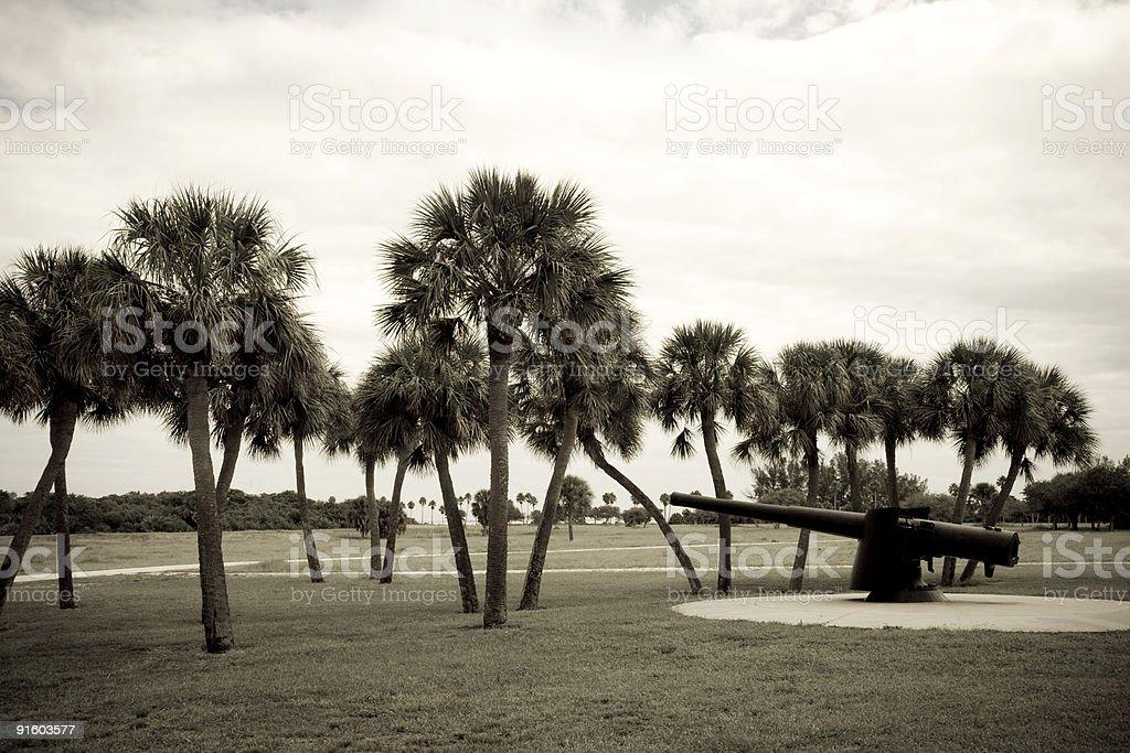 Sepia Gun with Trees stock photo