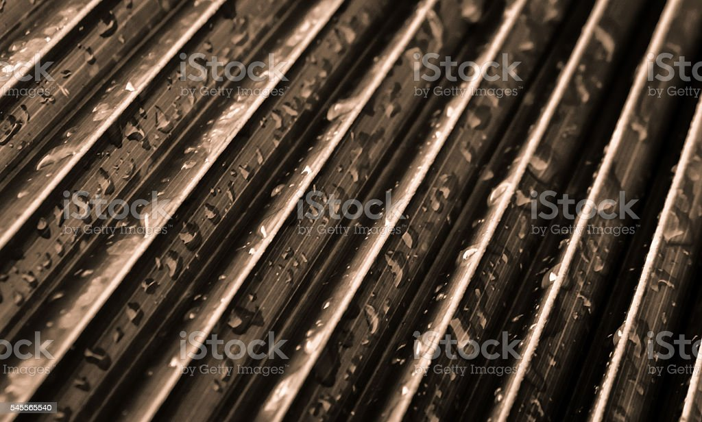 Sepia toned abstract palm leaf with water drops stock photo
