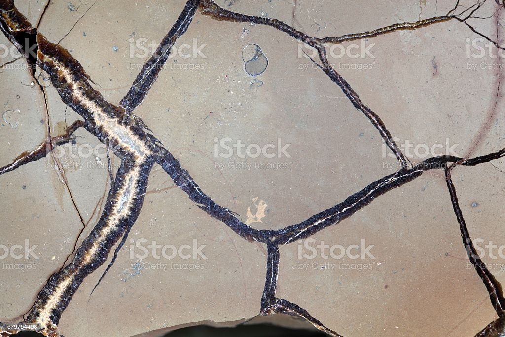 Septarian Geode stock photo
