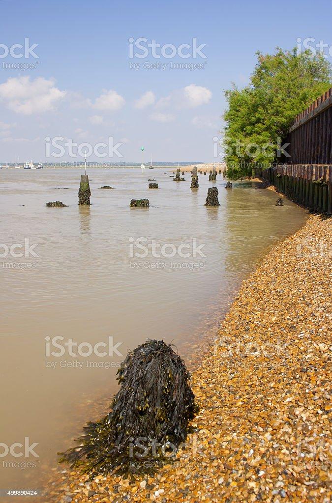 September ebb tide, River Deben at Bawdsey, Suffolk stock photo