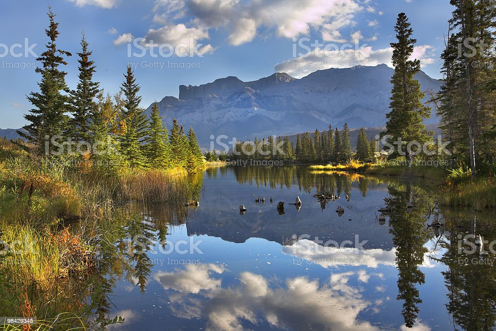 September morning in the north. stock photo