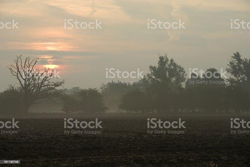 September sunrise stock photo