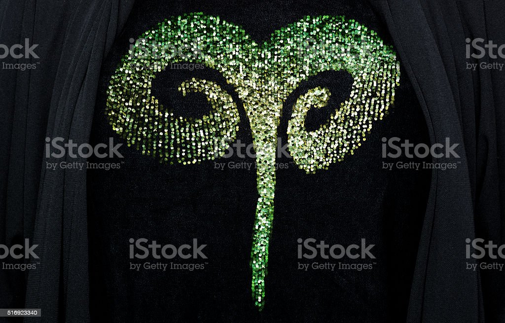 Sequin Aries  embroidery stock photo
