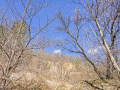 Serbian nature. Mountains near Uzice town