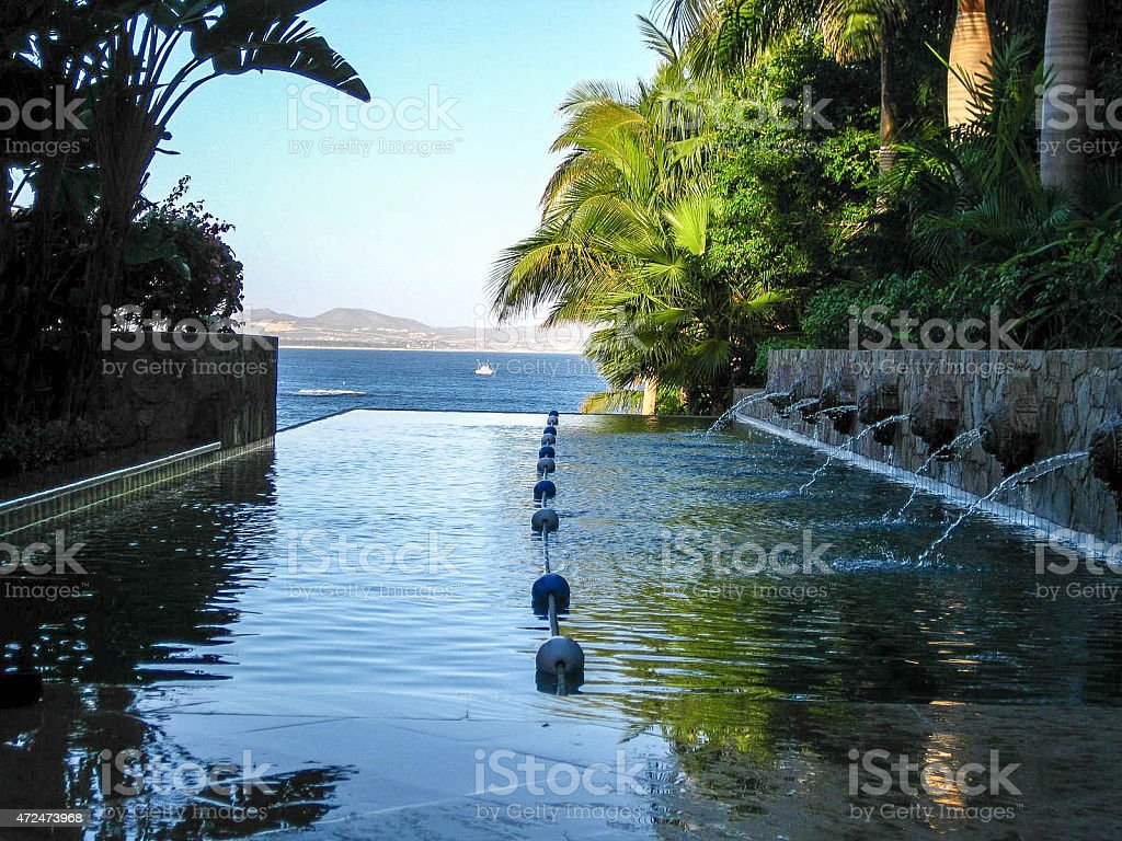 Serena lap pool with ocean and palms stock photo