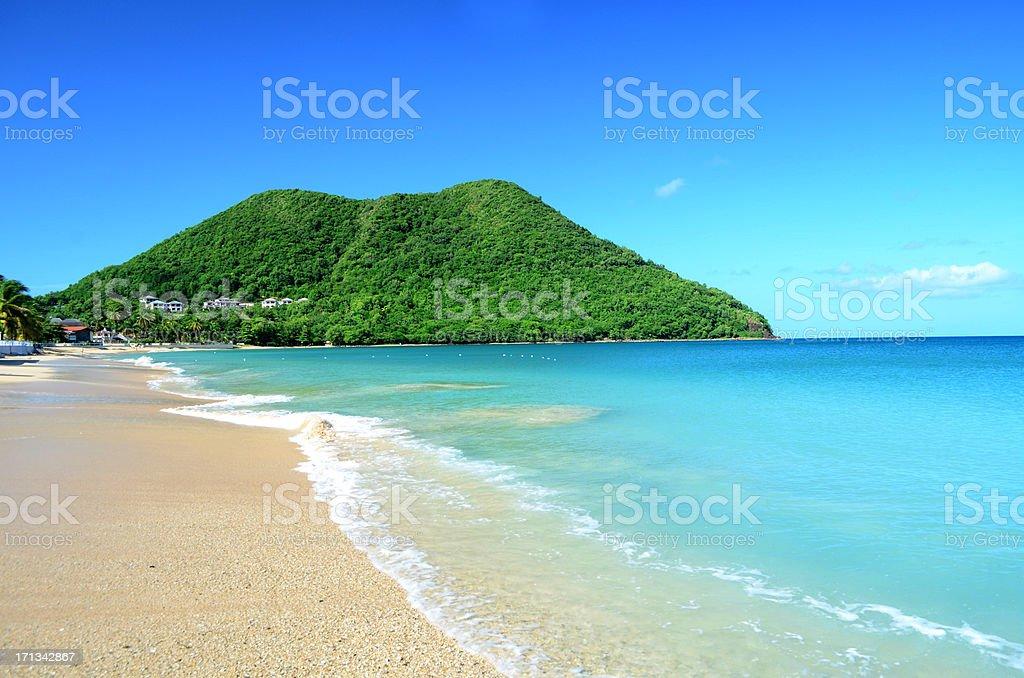 serene caribbean beach stock photo