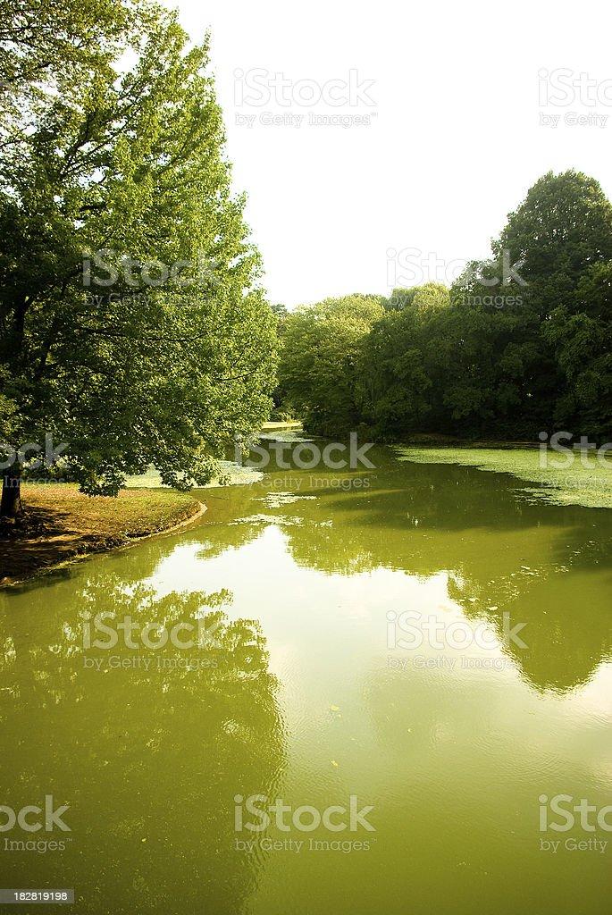 serene green lake and trees - Prospect Park Brooklyn stock photo