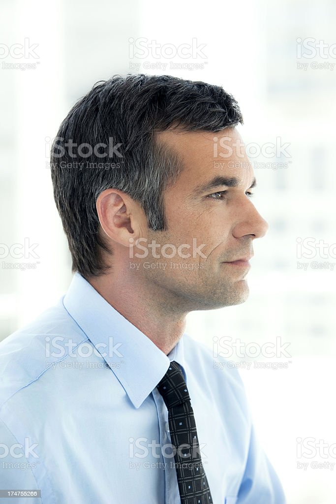 Serene Manager royalty-free stock photo