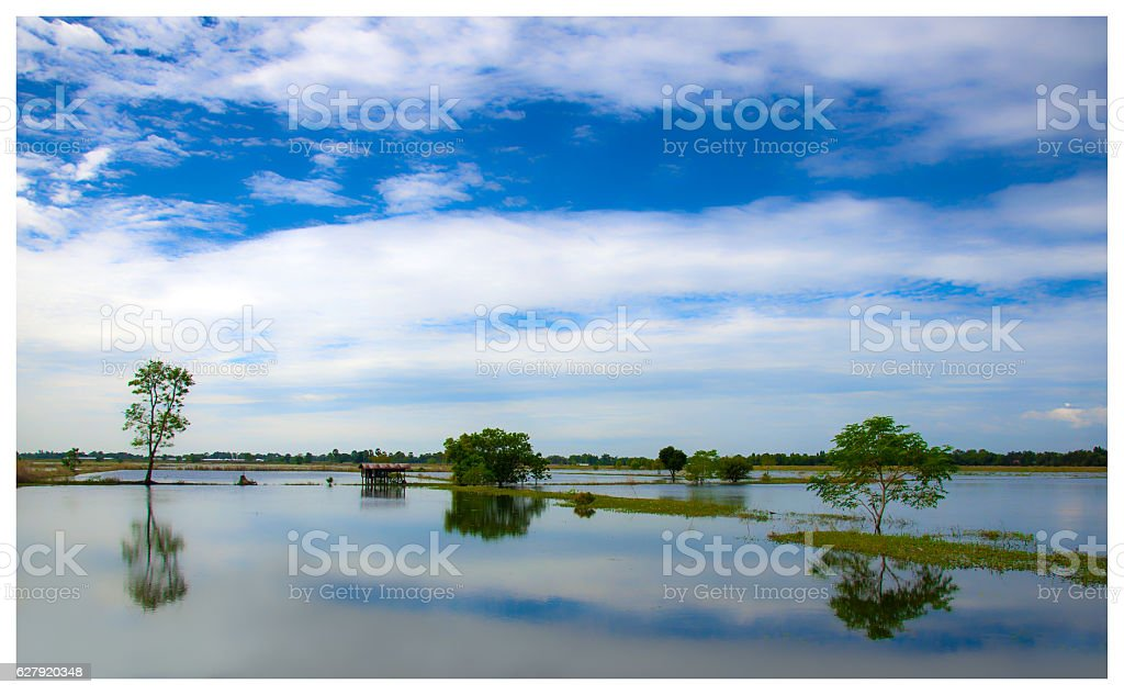 Serene morning and blue skies stock photo