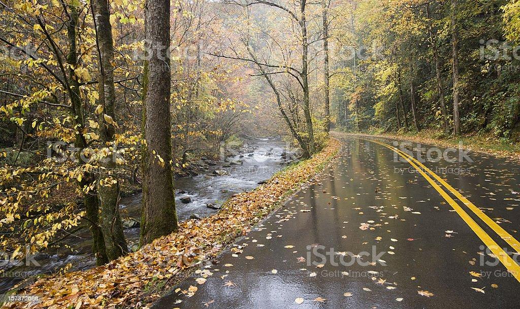 Serenity Road royalty-free stock photo