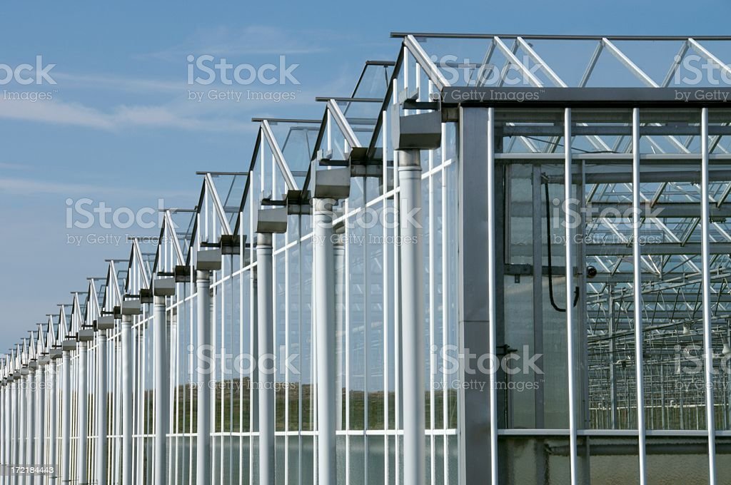 Series of industrial greenhouses stock photo
