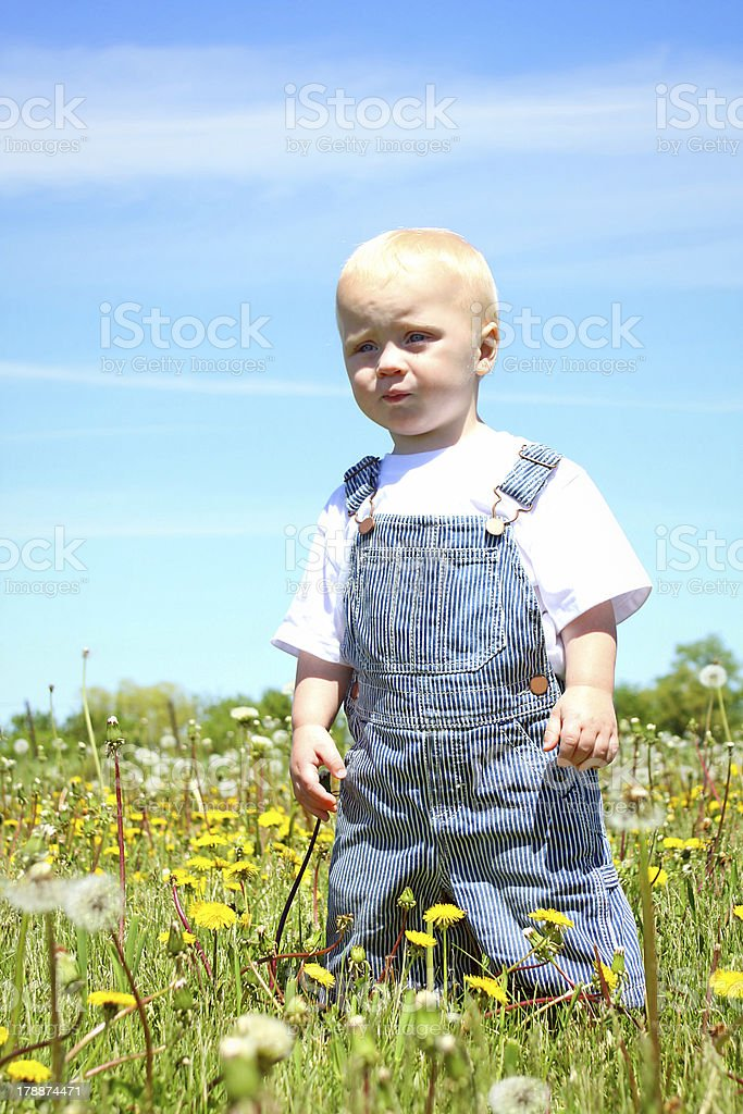 Serious Baby in Field royalty-free stock photo