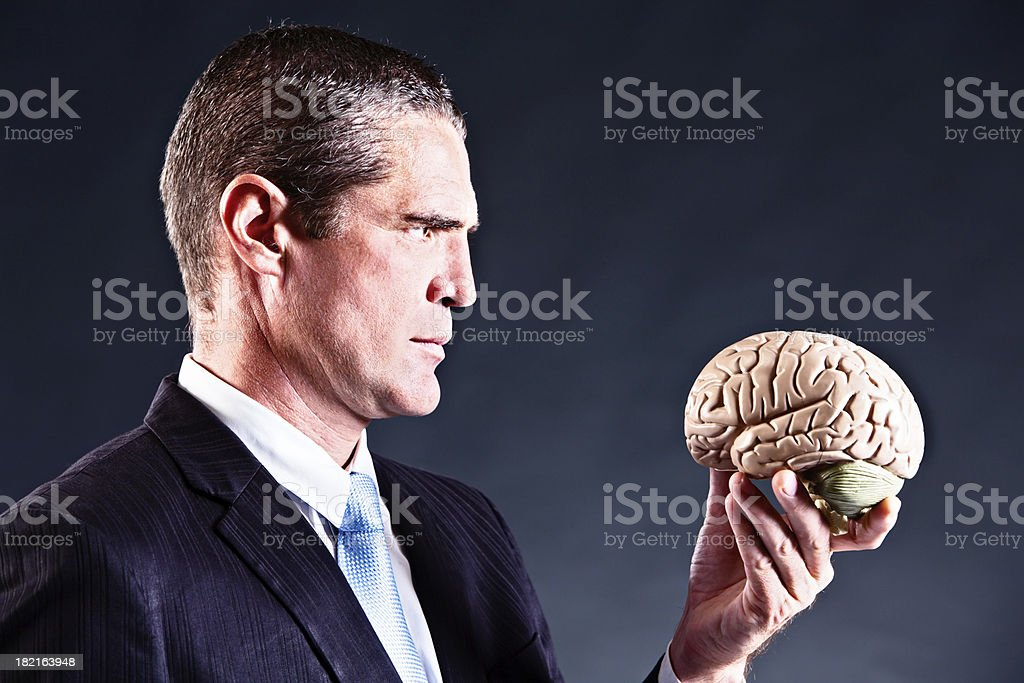 Serious businessman studies model brain royalty-free stock photo
