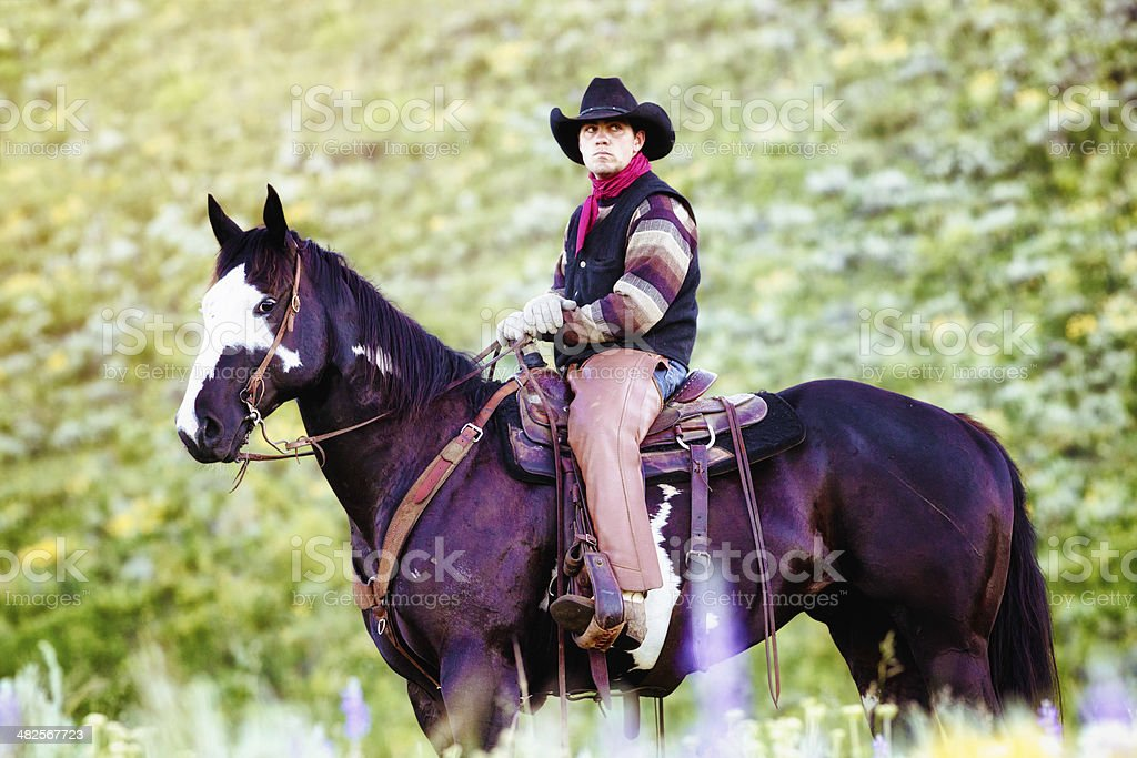 Serious cowboy pensive on his horse royalty-free stock photo
