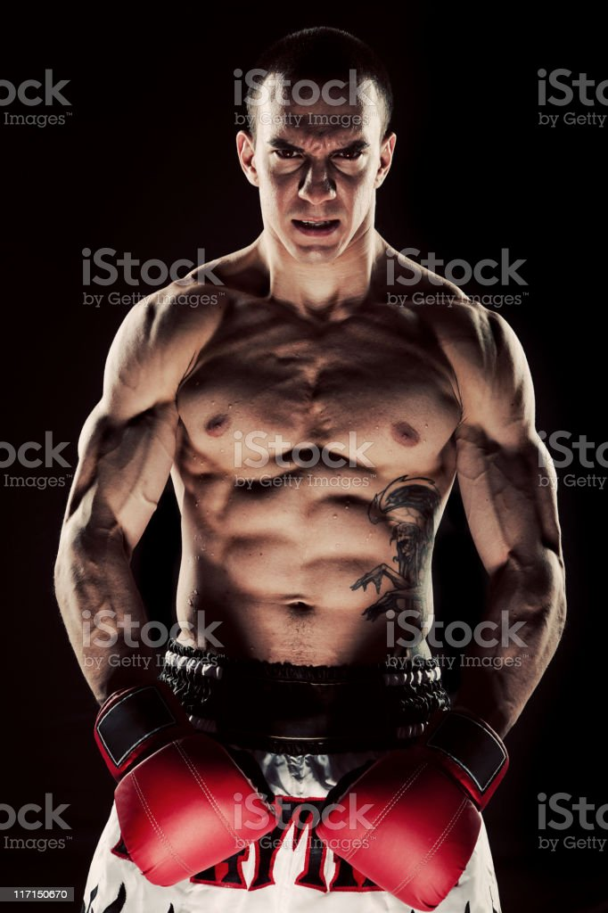 Serious Male Boxer stock photo